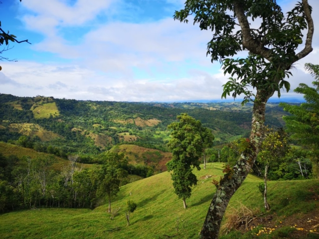 Salcedo valley, Dominican Republic